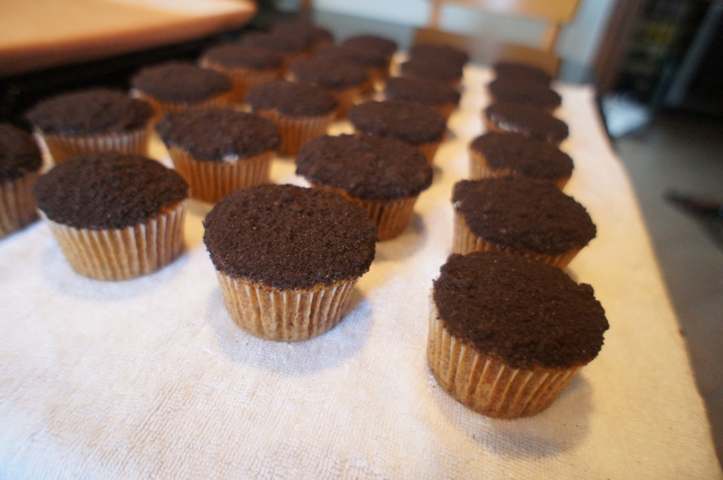 dipped cupcakes